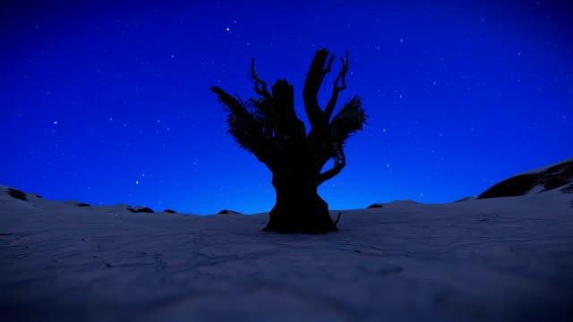 Árbol-contra-el-cielo-estrellado-nevando-batea-4K