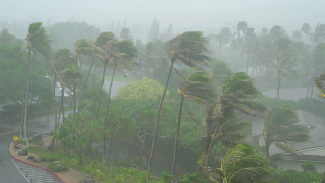 Tropical-Storm-with-Rain-and-High-Winds-Hit-Island