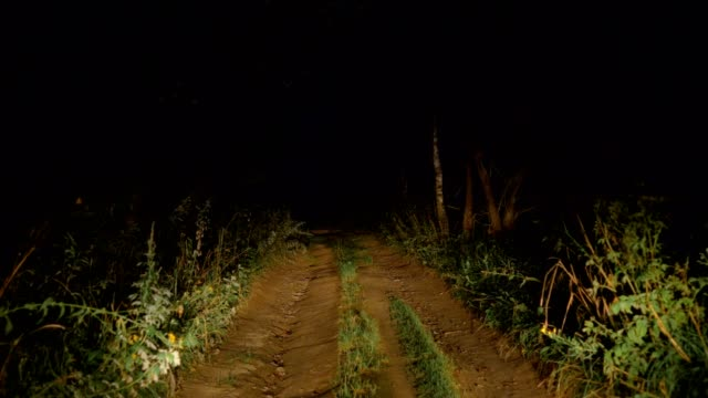 Driving-On-A-Bad-Rural-Road-In-The-Bush-In-The-Light-Of-Car-Headlights