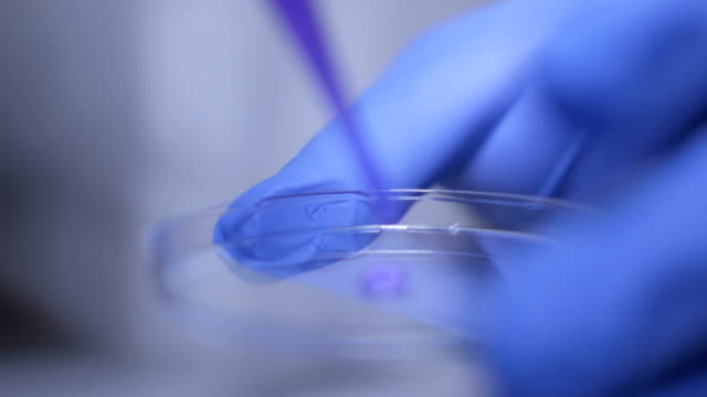 Close-up-of-hands-of-scientist-in-gloves-holding-pipette-and-pouring-solutions-into-test-tube-GMO-DNA-Medical-worker-Student-used-laboratory-vessels-in-experiments-Work-in-the-laboratory