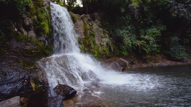 Waterfall-in-the-forest-Waiau-Falls-Color-graded-