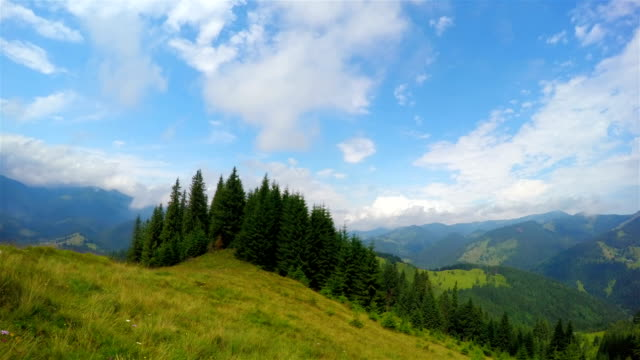 Paisaje-de-verano-en-la-montaña-