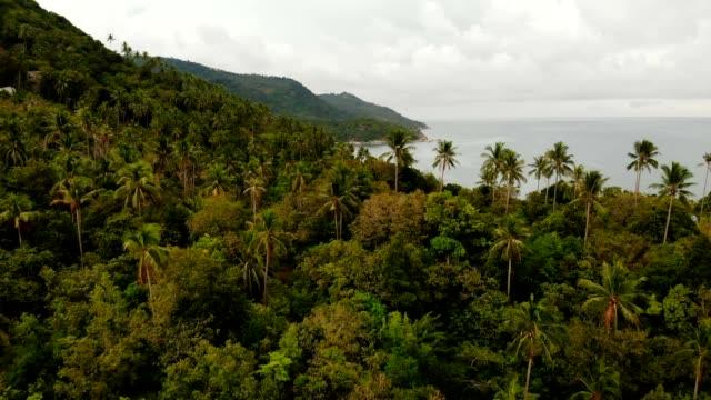Vista-superior-abejón-aéreo-de-acantilados-costeros-tropicales-del-paraíso-exótico-con-piedras-volcánicas-cubiertas-con-selva-selva-y-coconun-las-palmas-con-tranquilo-océano-o-mar-isla-de-Koh-Prangan-Tailandia