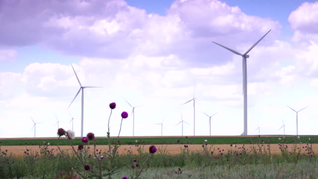 Cluster-of-wind-turbines-creating-clean-&-renewable-energy-