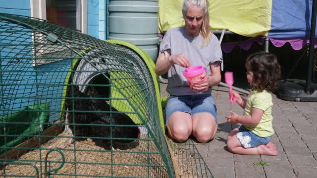 Niña-ayudando-a-su-alimentación-los-pollos-de-la-abuela