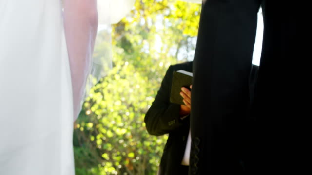 Groom-and-bride-holding-there-hands-4K-4k