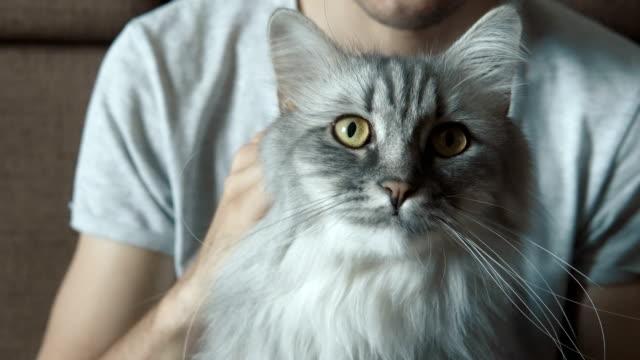 Man-caressing-his-cat