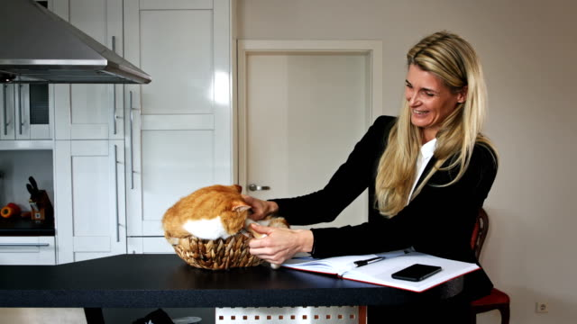 Business-Woman-Playing-with-a-Cat-in-a-Basket