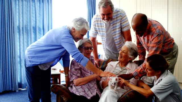 Senior-friends-and-female-doctor-stroking-kitten-at-retirement-home-4k