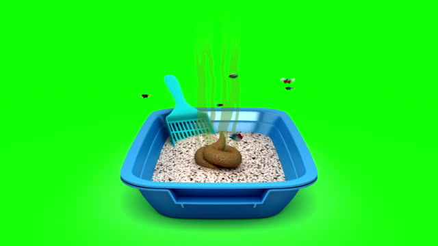 Poop-in-Cat-Litter-Box-3D-animation-Green-screen-loopable-