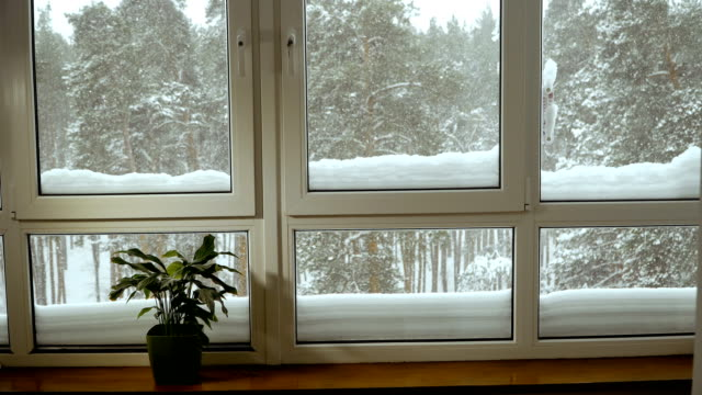 Ventana-Ventana-con-vistas-al-bosque-cubierto-de-nieve