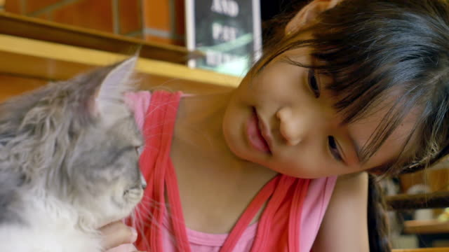 Asian-child-playing-her-kitten-in-cat-cafe