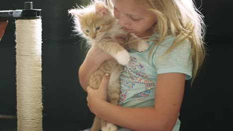 A-little-girl-pulls-a-kitten-out-of-its-house-and-gives-it-a-hug