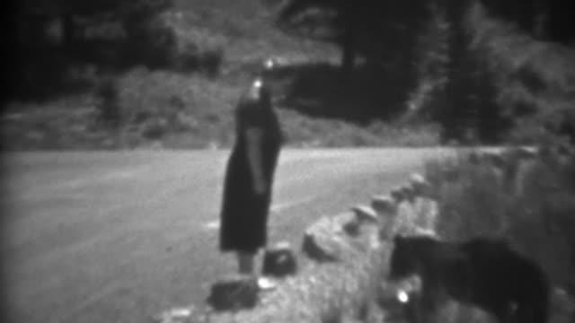 1937:-alimentación-closeup-carretera-animales-salvajes-oso-negro-de-la-mano-de-las-mujeres-