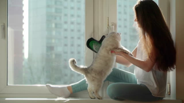 Search-of-antiallergens-Concept-of-cat-hair-as-a-source-of-allergy-
