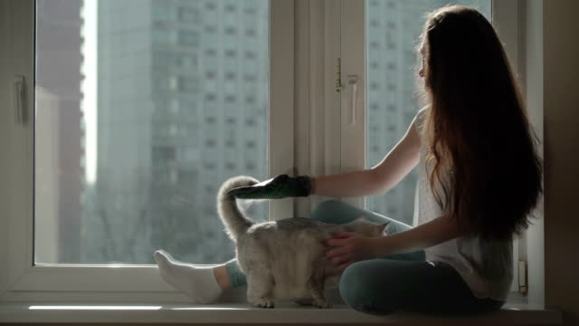 Cat-s-hair-is-a-bright-example-of-allergens-Concept-of-cat-hair-as-a-source-of-allergy-