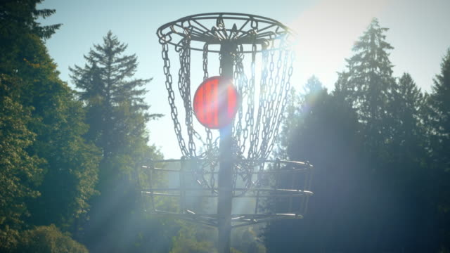 Sunny-Day-Disc-Golf-Background-with-Frisbee-into-Chains