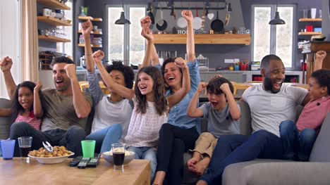 Two-Families-Watching-Sports-On-Television-And-Cheering