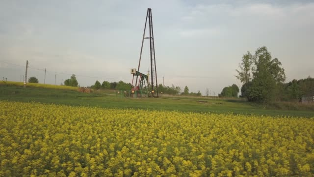 Oil-pump-station-and-raps-field-