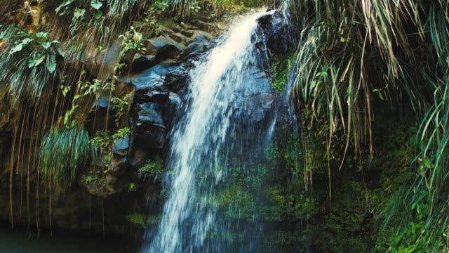 Waterfalls-Grenada-Annandale-Falls