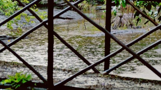 Lluvias-tropicales-y-las-gotas-de-lluvia-cayendo-en-el-estanque-del-río-con-un-puente
