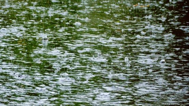 Lluvias-tropicales-y-las-gotas-de-lluvia-cayendo-en-el-estanque-del-río