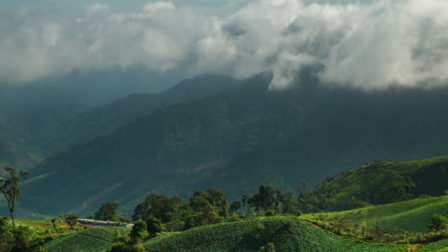cloud-and-foggy-on-morning-over-mountain
