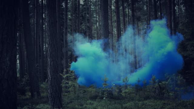4K-Halloween-Horror-of-Smoke-in-Dark-Forest