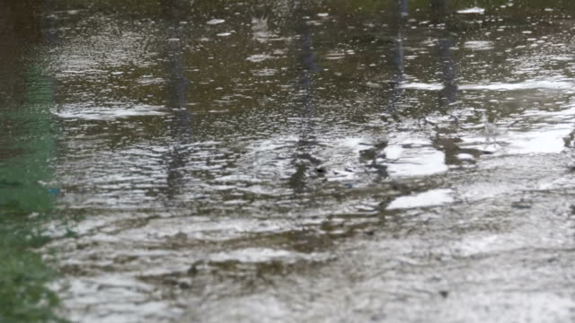 Drops-of-Rain-Fall-to-the-Pavement-Forming-a-Puddle