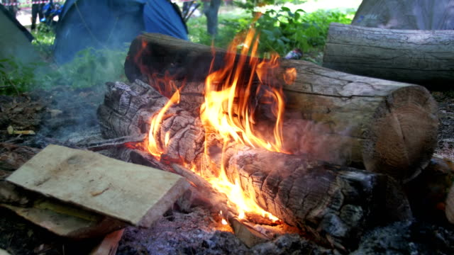 Bonfire-Burns-in-the-Camping-Amidst-a-Tent-and-Logs-in-the-Forest
