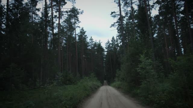 4K-Halloween-Horror-Driving-in-Dark-Forest