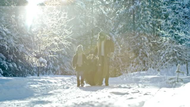 Chico-ayuda-padre-llevando-árbol-de-Navidad