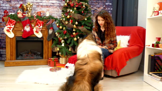 A-girl-with-a-dog-celebrating-Christmas