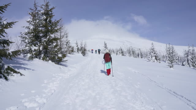 Girl-hiking-on-snow-in-Slovak-mountains-during-sunny-day-in-winter