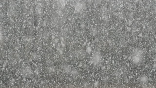 Detalle-toma-de-nevadas-de-grosor