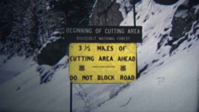 (8-mm)-1965-Vintage-corte-su-propia-Colorado-árbol-de-navidad-de-montaje