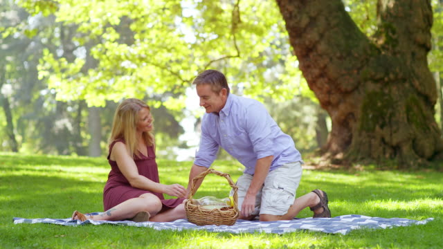 Mature-Couple-Having-a-Picnic-in-a-Park