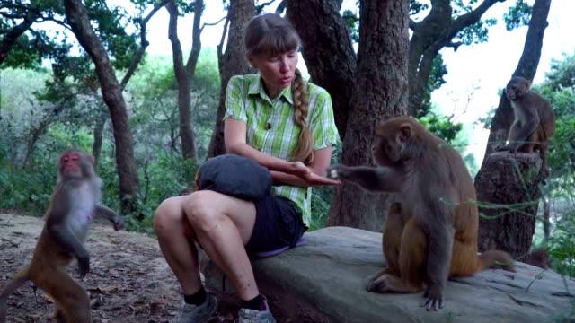 The-girl-feeds-wild-monkeys