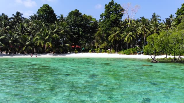 Crystal-clear-blue-water-of-a-Havelock-island-beach-Andaman-and-Nicobar-islands