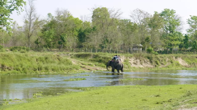 Elephant-safari-with-tourists-in-jungle-national-park-in-Chaitwan-Nepal-