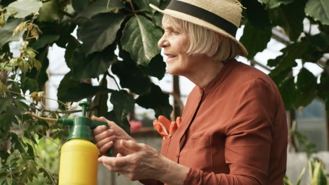 Elderly-Woman-Working-in-Greenhouse-and-Smiling-for-Camera