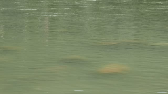 The-Ganges-River-flowing-quietly-at-Rishikesh-India-Vintage-filter-close-up-