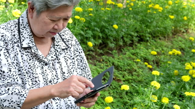 asian-elder-woman-holding-mobile-phone-while-sitting-on-bench-in-garden-elderly-female-smiling-while-texting-message-using-app-with-cellphone-in-park-senior-use-smartphone-to-connect-with-people-on-social-network-with-wireless-internet-connection-outdo
