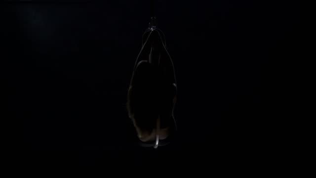 Graceful-girls-performs-trick-on-the-aerial-hoop