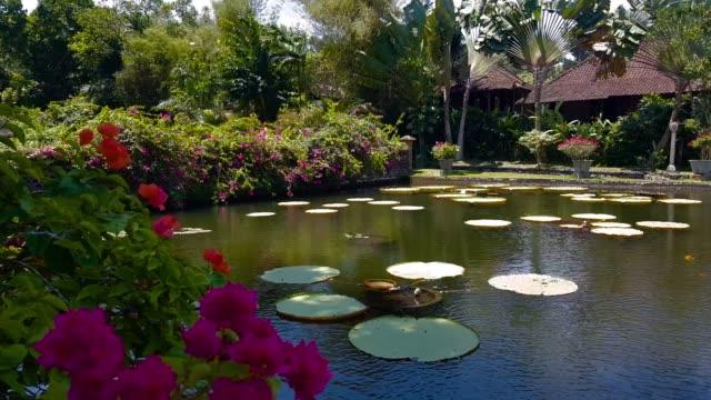Tirta-Gangga---the-water-palace-in-Bali-