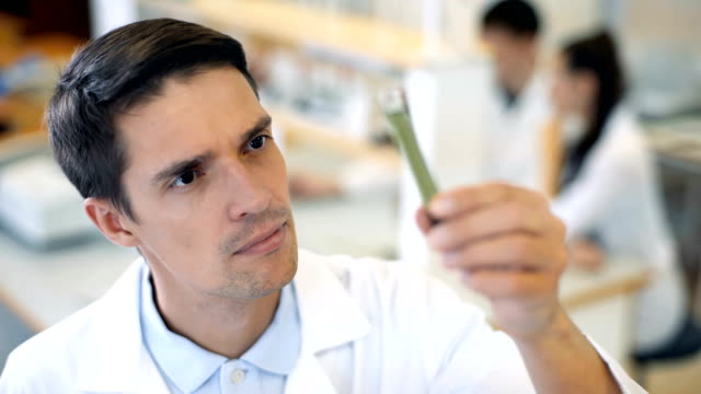Scientist-working-at-the-laboratory