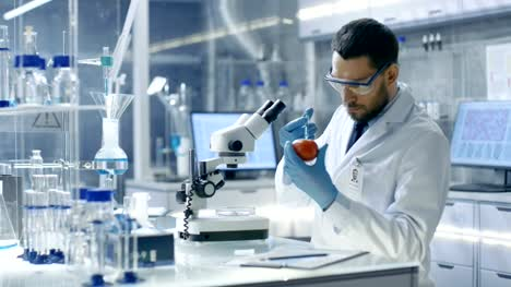 In-a-Modern-Laboratory-Food-Scientist-Injects-Tomato-with-a-Syringe-He-s-Working-on-a-Genetic-Modifications-of-this-Vegetable-such-as:-Taste-Enrichment-Parasite/-Cold-Resistance-