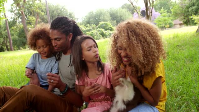 Acercamiento-de-familia-disfrutando-de-nuevo-encantadores-suave-frontera-Collie