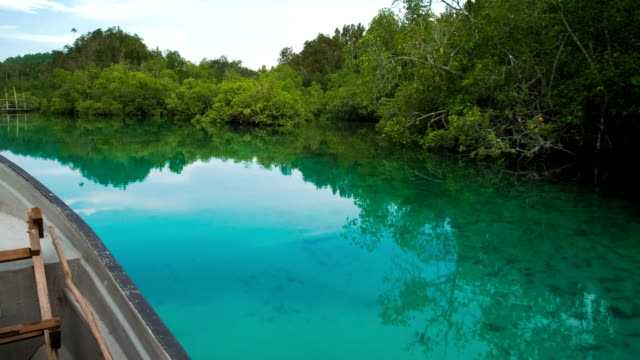 Hidden-Bay-boat-moving-over-blue-shallow-water-mangrove-reflection-on-calm-surface-Raja-Ampat-West-Papua-Indonesia