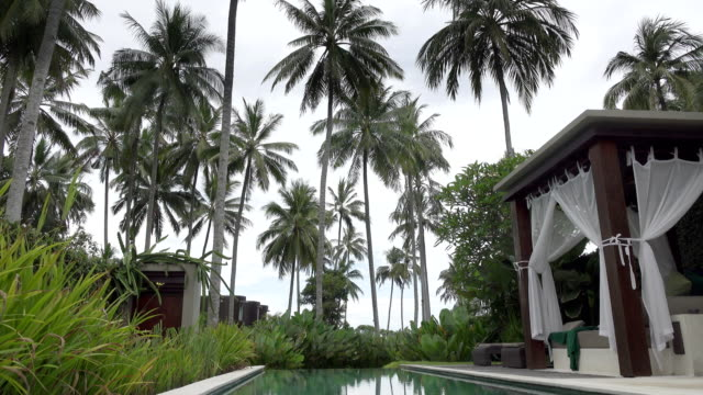 A-view-of-the-territory-of-the-tropical-resort-with-the-pool-palm-trees